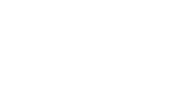 ESB Programmatic